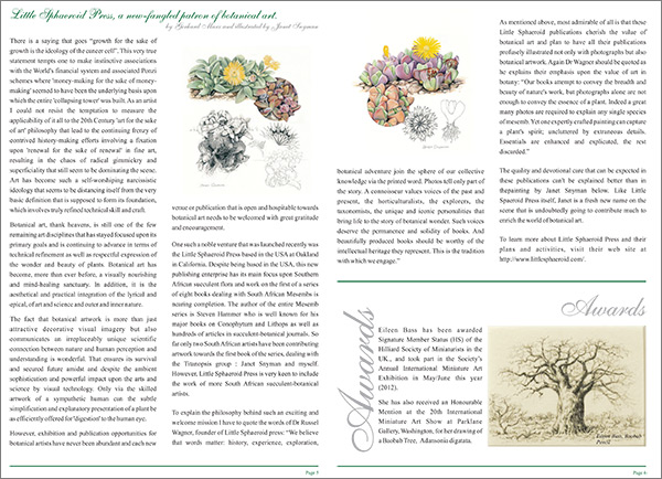 Article by Gerhard Marx about Little Sphaeroid Press and the artwork of Janet Snyman